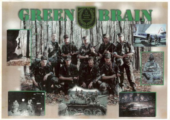 green-brain-m_594x420